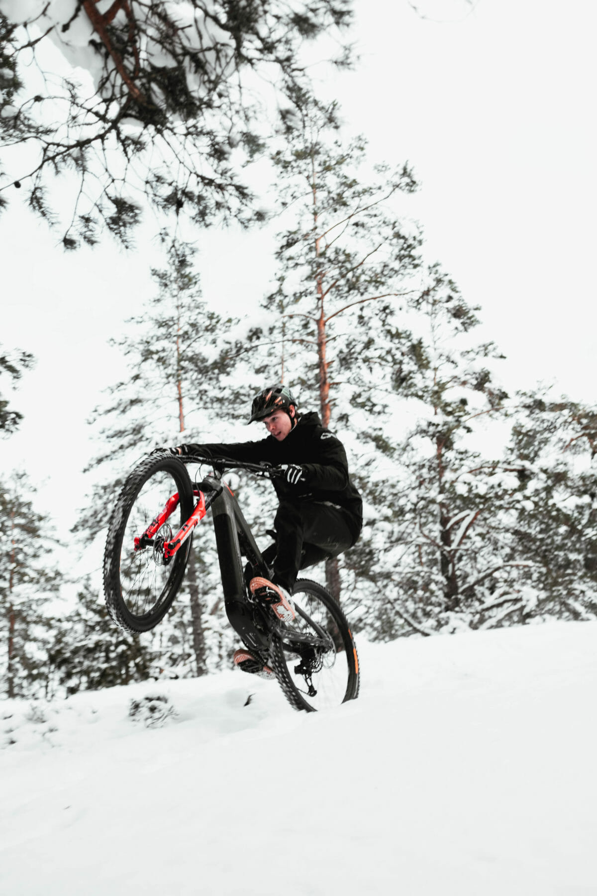 CANNONDALE x MAX #2