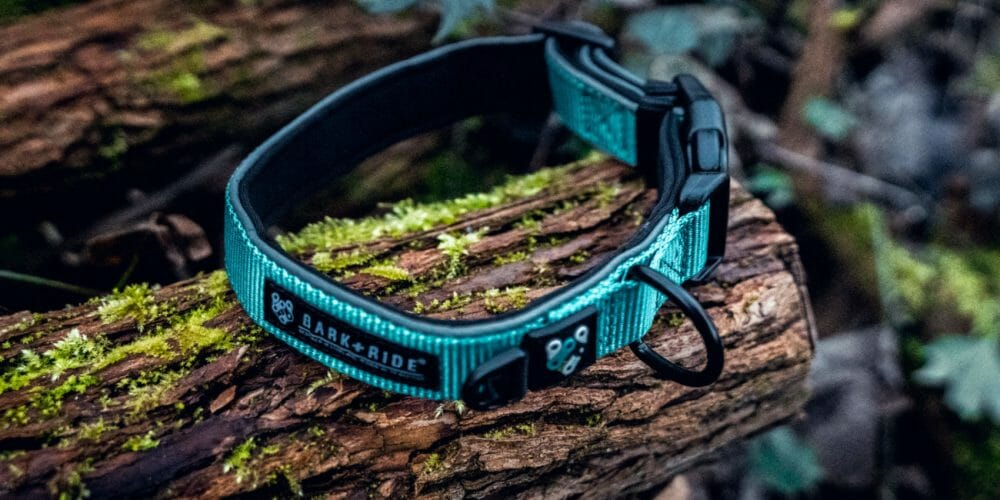 Bark + Ride Trail Collar - Tractive Tracker-8